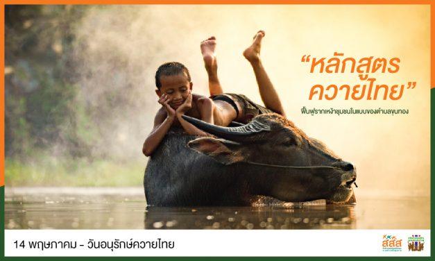"""""""หลักสูตรควายไทย"""" ฟื้นฟูรากเหง้าชุมชน ในแบบของตำบลขุนทอง"""