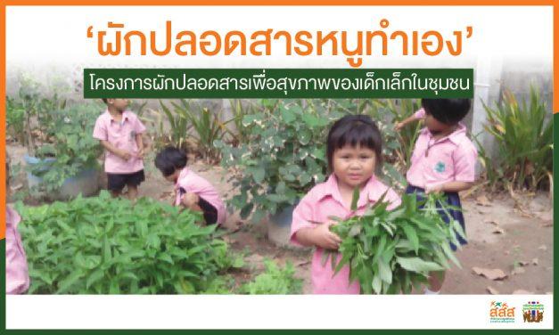 'ผักปลอดสารหนูทำเอง' โครงการผักปลอดสารเพื่อสุขภาพของเด็กเล็กในชุมชน